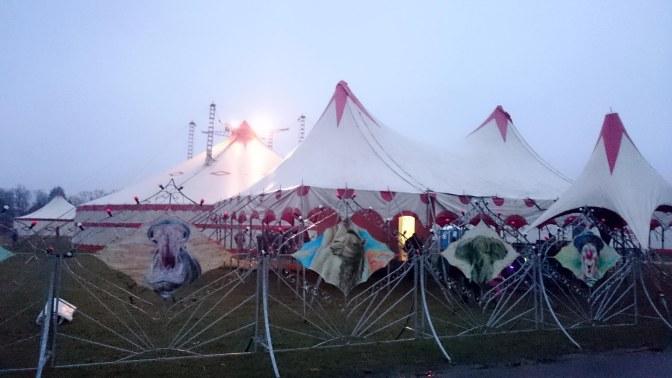 The Circus Next Door